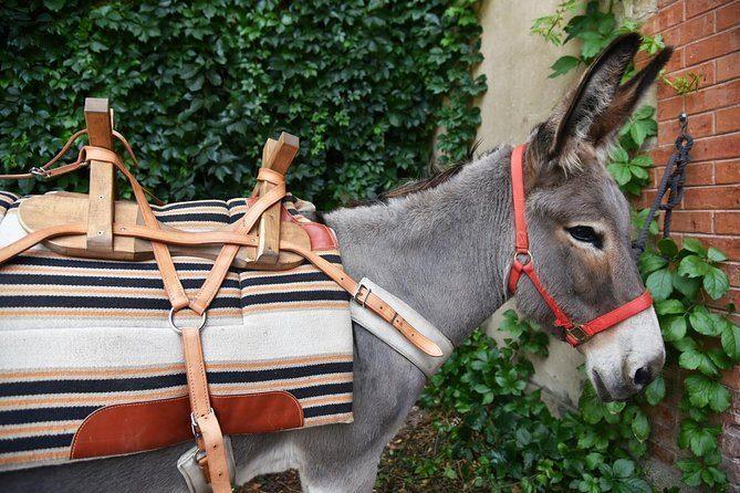 Randonnée au pas de l'âne dans la région d'Aix-en-Provence